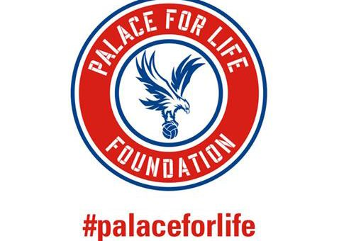 Trustee Application – Palace for Life Foundation